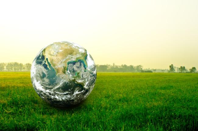 Umweltschutz geht uns alle an! Wir von Zoobedarf Hitzegrad wollen unseren Beitrag leisten und reduzieren dank neuem Kältemittel effizient und nachhaltig die Treibhausgas-Emission.