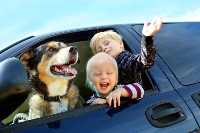 Glückliche Kinder un hund schauen aus Autofenster heraus