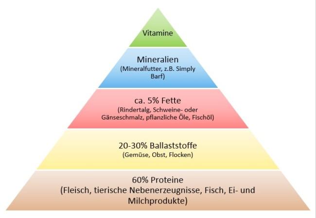 Futterpyramide Barf Empfehlung