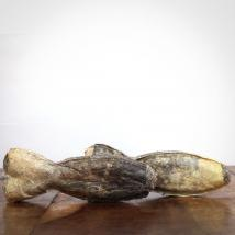 Kauknochen Dorsch, 12 cm