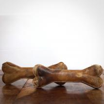 Kauknochen Hirsch, 12 cm