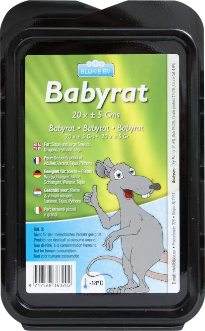 Babyratte , ca. 10 g , 20 Stück für Katzen