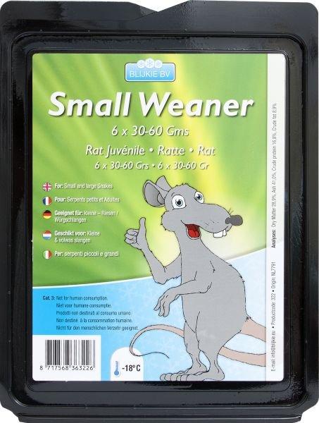 Kleine Weaner Ratte, 25-60 g, 5 Stück für Katzen