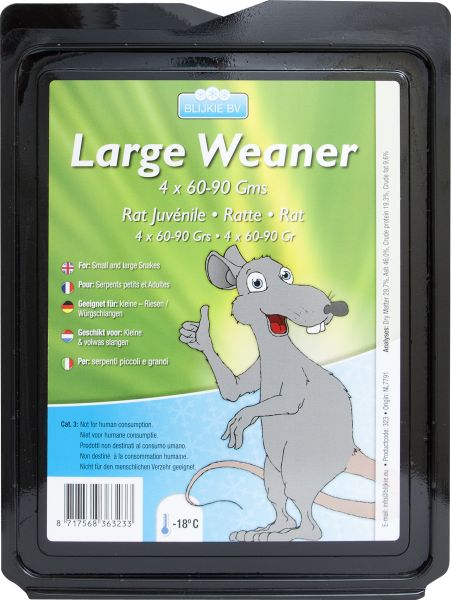 Große Ratte, 250-350 g, 5 Stück für Greifvögel