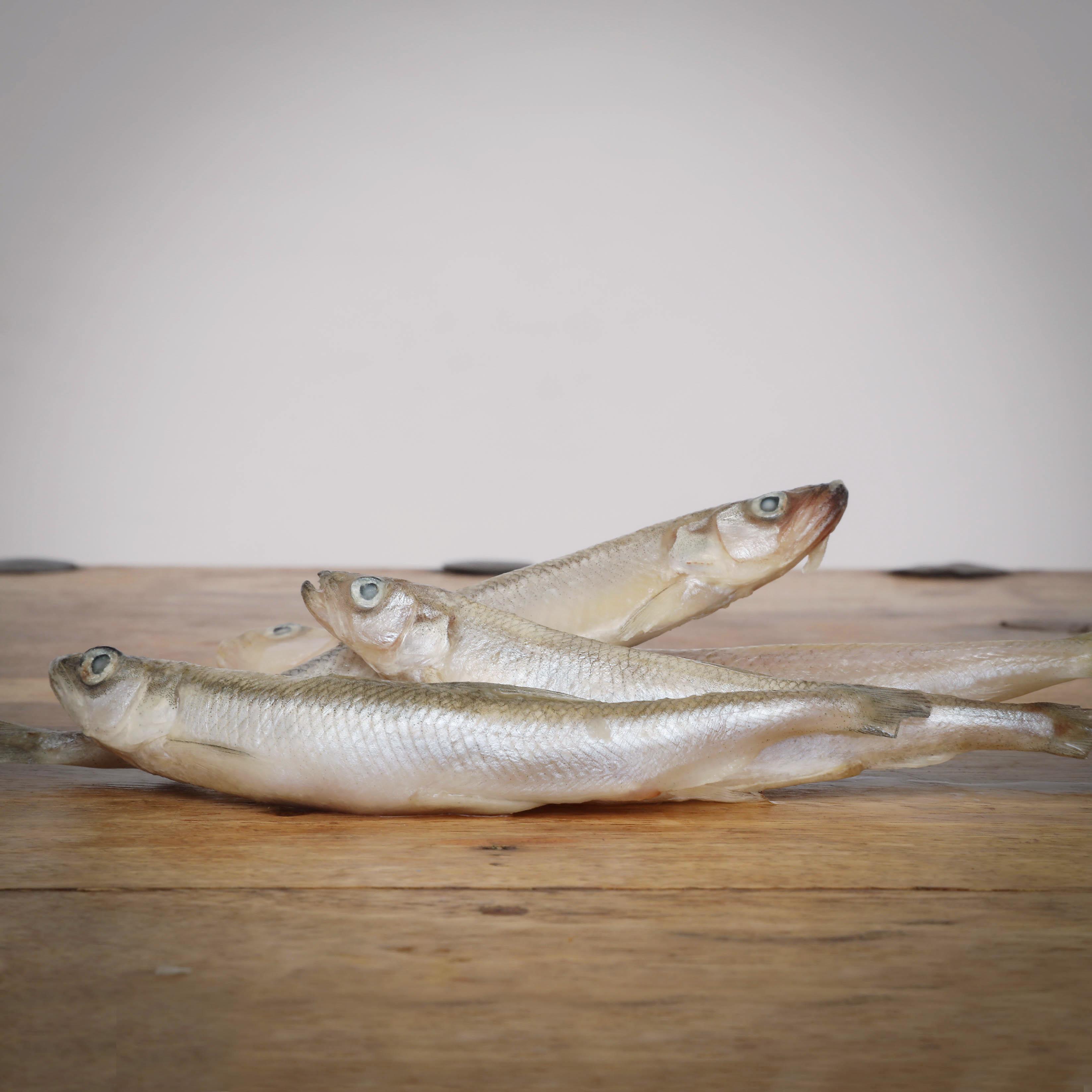 Stinte, ganze Fische, lose, 500 g für Greifvögel